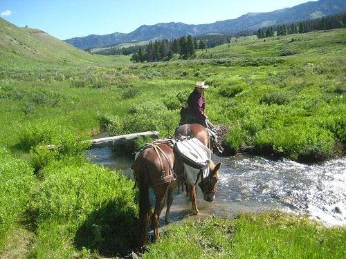 Wyoming-National-Park