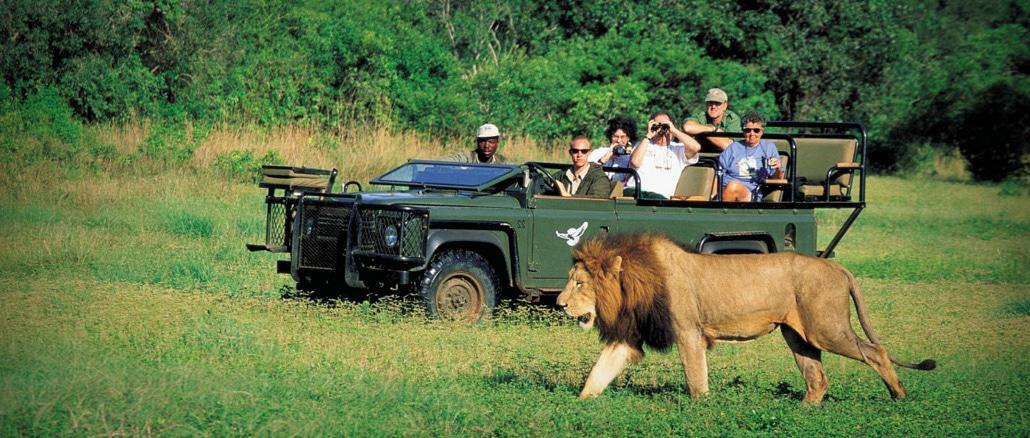 Øst-afrikansk-Safari