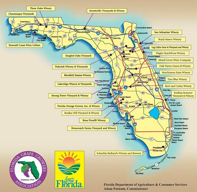 Florida.Win_1