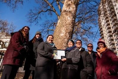 Forests_Ontario_Heritage_Tree_Honoured_at_London_s_Historic_Eldo