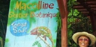 Macolline