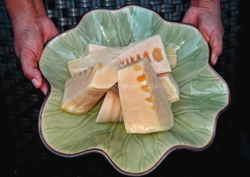bambus u zdjeli