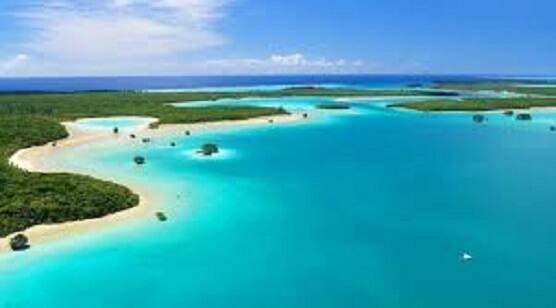 کالدونیای جدید