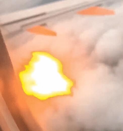 اعتصاب پرنده موتور هواپیما را به آتش می کشد ، فرود اضطراری وحشتناکی را برمی انگیزد