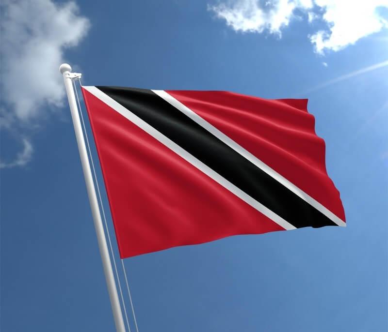 Fitsangatsanganana mpitsidika iraisampirenena 380,000 amin'ny taona 2020 ny fizahan-tany momba ny fizahantany Trinidad Limited
