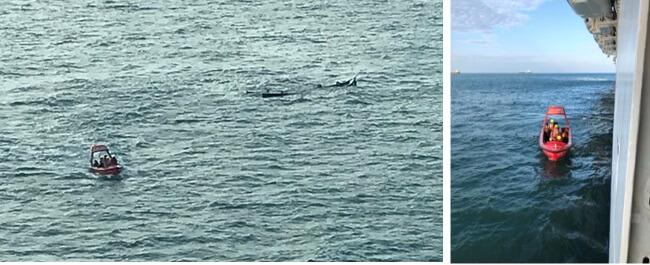 کشتی Dream Cruises سه مرد را از قایق غرق شده نجات می دهد