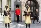 معرض الملك توت في لندن: بيع 285 ألف تذكرة قبل الافتتاح الرسمي