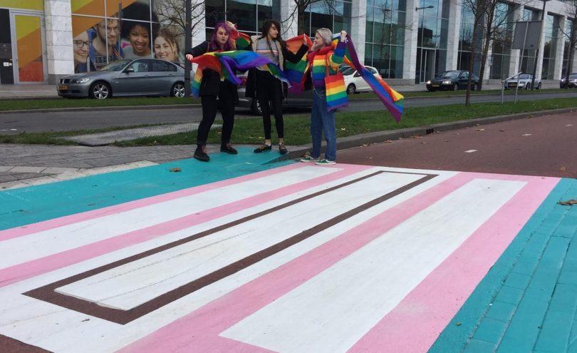 क्यों? नीदरलैंड्स का पहला 'ट्रांसजेंडर क्रॉसवॉक' लोगों को अपना सिर खुजलाता है