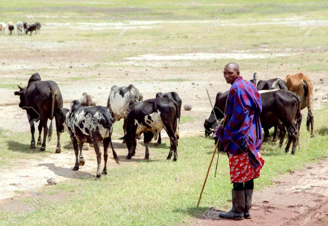 60 Jahre später: Das Naturschutzgebiet Ngorongoro wird nicht sterben