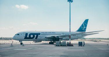 ¿Quién es el cambio de rumbo de la aerolínea del año?