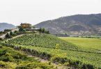 کنفرانس گردشگری شراب UNWTO تحول روستایی و مشاغل را جشن می گیرد