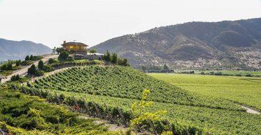 Konference o vinařské turistice UNWTO slaví transformaci venkova a pracovní místa