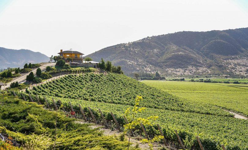 Konferencija UNWTO o vinskom turizmu slavi ruralnu transformaciju i radna mjesta