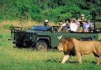 Nationalparker markerer tres års bevaringssucces i Tanzania