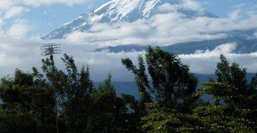 Mandany ny fialantsasatra eo amin'ny Tendrombohitra Kilimanjaro