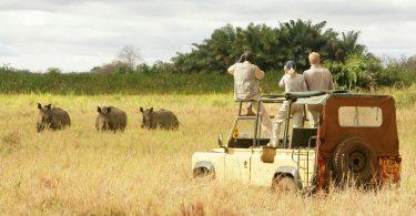 بزرگترین پارک ملی در شرق آفریقا در تانزانیا واقع شده است