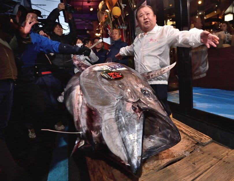 El 'Tuna King' de Japón derrocha $ 1.8 millones en UN atún