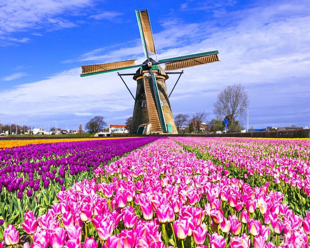 Holland officially disappears from tourist maps