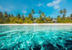 Pariwisata menyang Karibia tuwuh ing 2019