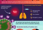सेमीजिस 4 इन्फोग्राफिक फेब 13 2020