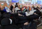 Aeroflot: More than 50,000 Russian citizens repatriated since February