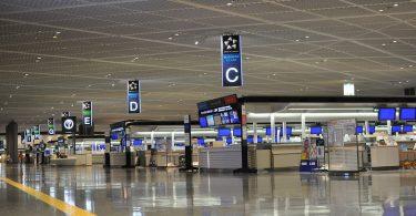 Аэрапорт Токіо Нарыта каранцін прыбывае пасажыру ў кардоннай скрынцы