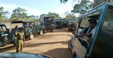 Srí Lanka Wildlife Parks: Post-COVID-19 Operations a New Start?