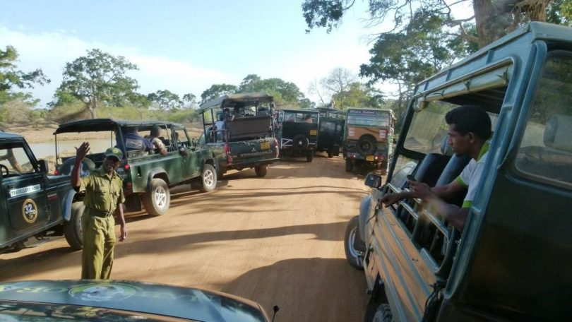 Parques de vida selvagem do Sri Lanka: operações pós-COVID-19 um novo começo?