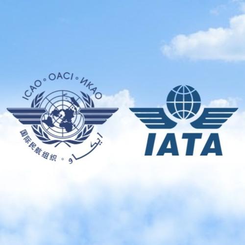 IATA: اجرای فوری دستورالعمل های ICAO COVID-19 مورد نیاز است