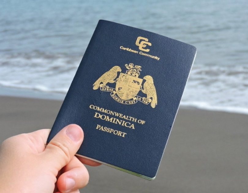 دومینیکا میلیون ها میلیون دلار از برنامه Citizenship توسط برنامه سرمایه گذاری در آموزش و پرورش سرمایه گذاری می کند
