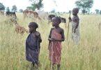 Miljoenen Afrikaanske bern riskearje bernewurk yn 'e krisis fan COVID-19