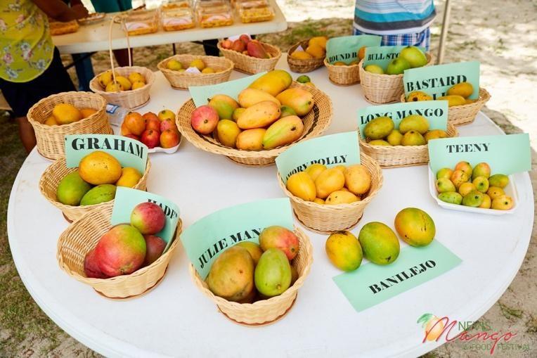 Nevis Mango Festival 2020 သည် Virtual Event ကိုစတင်ခဲ့သည်