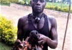 Uganda Wildlife Authority arresterer fire krybskytter i silverback-gorilladød