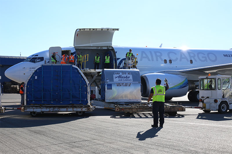 IATA: Air cargo recovery slows down in June