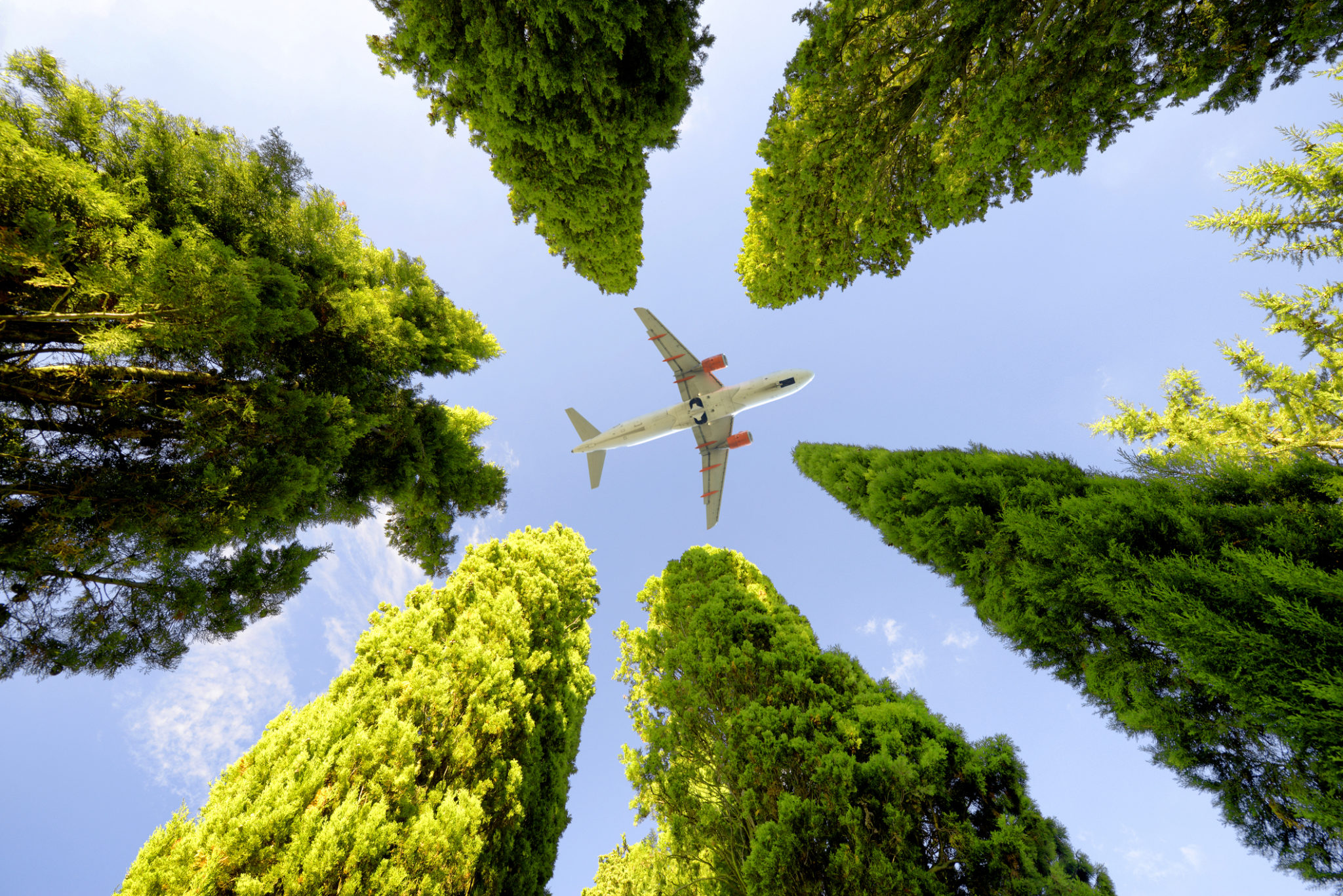 IATA: Post-COVID-19 aviation recovery must embrace sustainable fuels