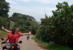 الحكومة تضع شروطًا صارمة لبودا بوداس في أوغندا