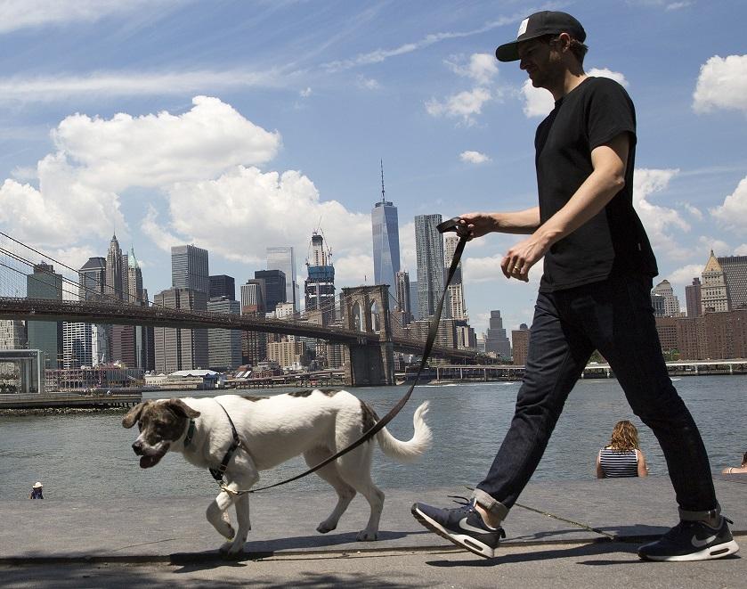 New York City named one of world's top ten best walking cities