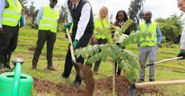 Obsido in Mexico otia Grais Kigali VIATOR facilities