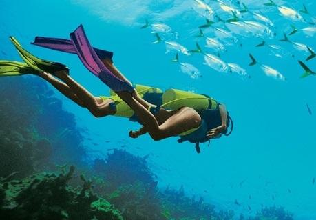 Курортите за сандали и плажове получават 9 награди за гмуркане