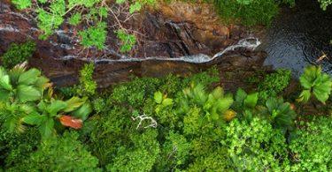 Seychelles Sweeps Sustainable Tourism Destination Award