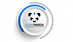 Following mainstream chat app's exodus, PunkPanda sees upsurge in new users