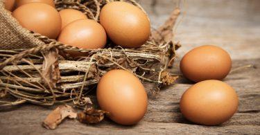 Hoteli Ovolo najavljuju novu politiku korištenja samo jaja bez kaveza