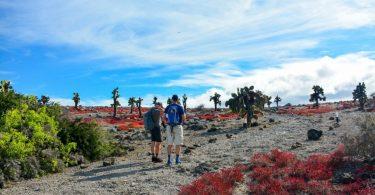Ceļošana ir atgriezusies Galapagu salās