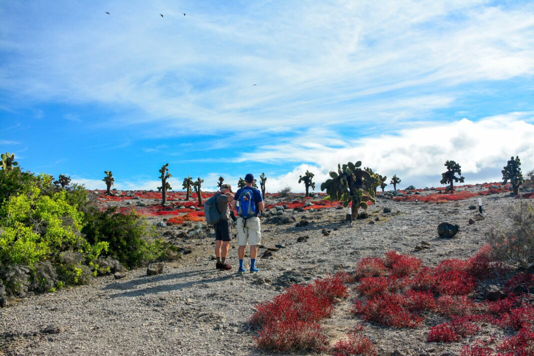 Travel is back in the Galapagos Islands