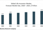 life insurance global market re