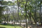 πάρκο 2