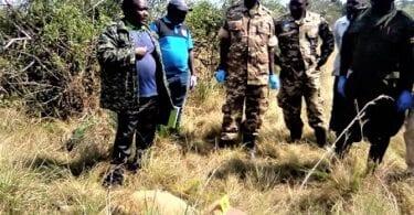 लग गया! युगांडा के शेर हत्यारे गिरफ्तार