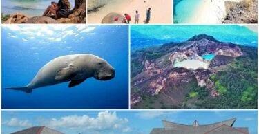Seychellien entinen matkailuministeri asetti Indonesian matkailun uudelleen