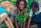 Sandals Resorts se vydává na misi udržitelnosti 10,000 XNUMX stromů