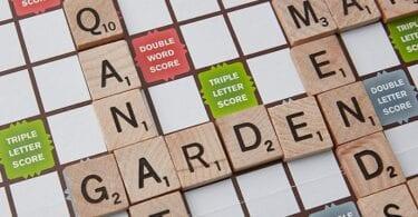 Нигери хэрхэн өрсөлдөх чадвартай Scrabble-т сайн болсон бэ?